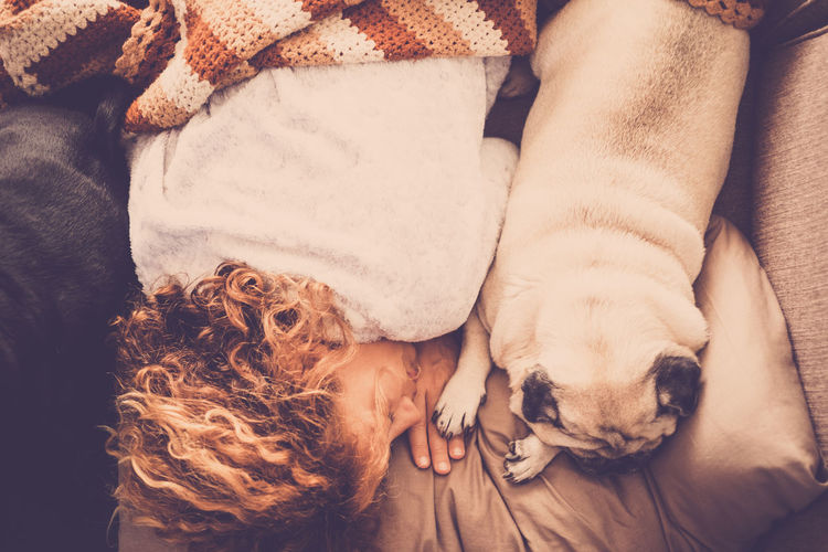 High angle view of woman with dogs sleeping on bed