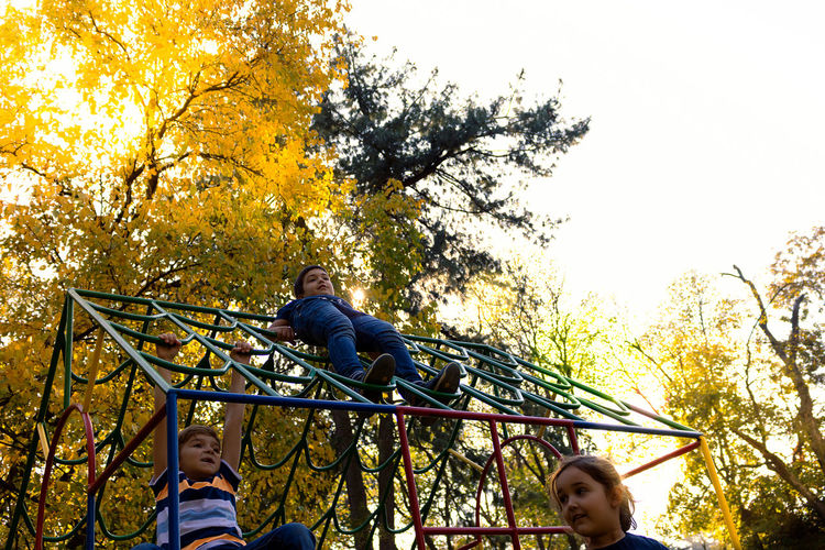 Low angle view of people sitting on tree during autumn