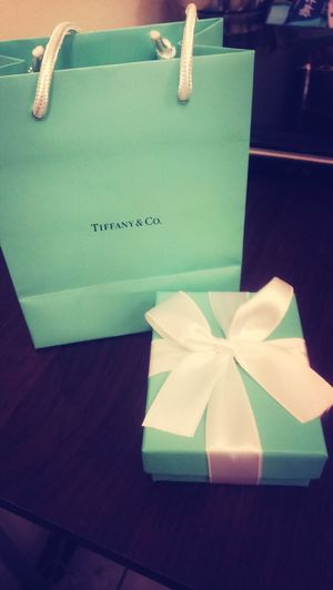 every girl's dream?? Tiffany&Co. Necklace From Boyfriend Anniversary