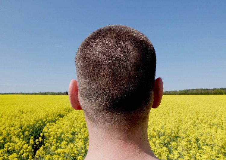 Rear View Of Man Overlooking Flowerbed