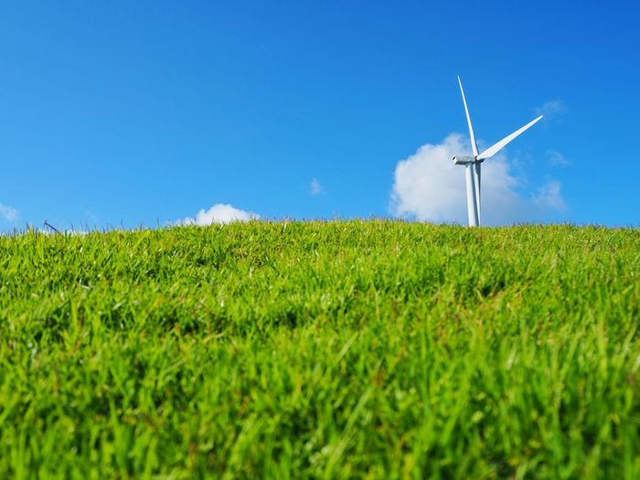 Wind turbine on green grass and blue sky background Green Grass Field Blue Sky Windmill Wind Turbine Wind Power Power In Nature Rural Scene Clear Sky Irrigation Equipment Alternative Energy Agriculture Fuel And Power Generation