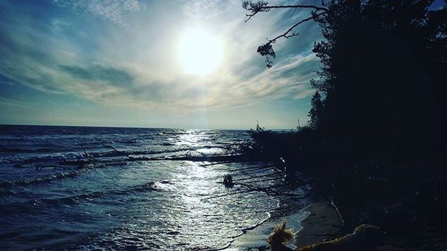 They Say Time's Supposed To Heal You, But I Ain't Done Much Healing Hello Sea Family Blue Sky Sun Wind Water Trees Adele Awesome Sunday November Latvija Latvia Kolkasrags Amazing View