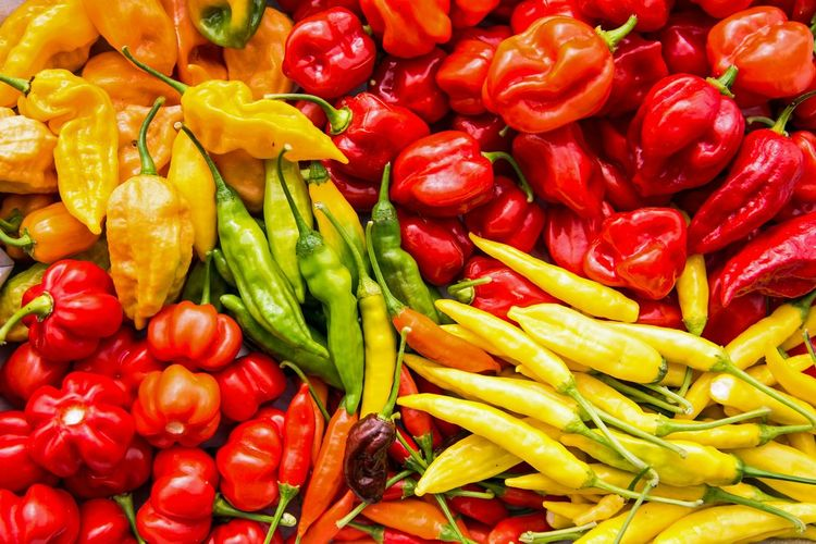 Full frame shot of various bell peppers and chili peppers