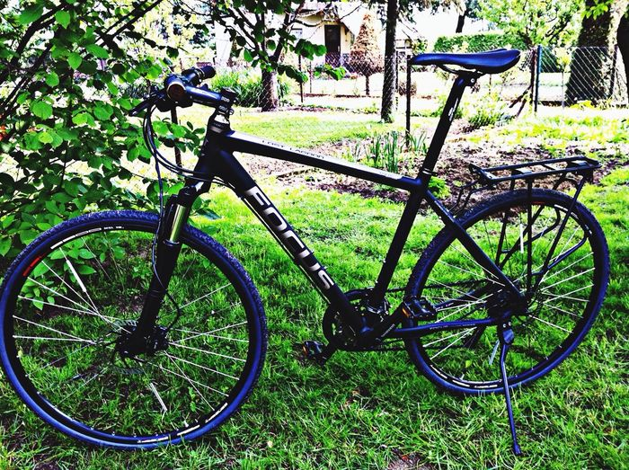 Bike black matt mattschwarz Focus MTB