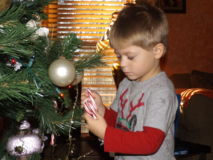 Boy decorating christmas tree at home