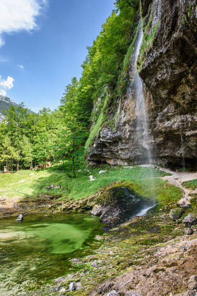 Waterfalls and lake in Tarvisio. Nature to discover. Friuli Venezia Giulia Hiking Panorama Tarvisio Colorful Emerald Water Flowers Forest Insect Landscape Landscapes Mountain Waterfall