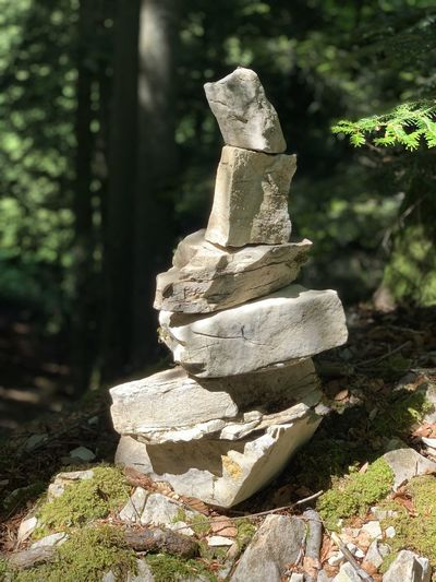 Close-up of stone stack on rock in forest
