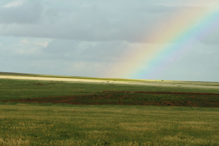 2011 Cloud - Sky Day Field Grass Green Color Horizon Over Land Landscape Meadow Morocco Multi Colored Nature No People Outdoors Rainbow Scenics Sky Spectrum The Great Outdoors - 2017 EyeEm Awards