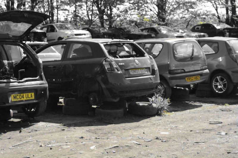 Car Day Land Vehicle Nature No People Outdoors Road Scrap Yard Selective Color Transportation Tree Yellow