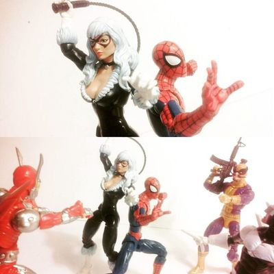 Spidey and Cat against all ods Marvellegends Spiderman Amazingspiderman Tcb_flyupandaway Articulatedcomicbook Mcu Webhead Webslinger Infiniteseries Couples Favoritecouples BLackCat Feliciahardy Peterparker Baf Nerd Comics Baf Disney Hasbro Boomerang  Ultimatebettle Love Figurecollection Collector Collection actionfigures actionfigurephotography marvelentertainment