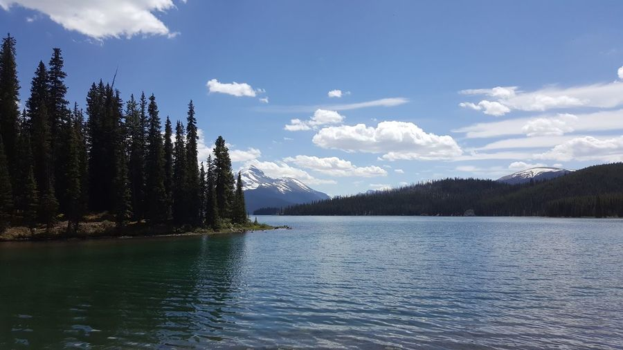 Maligne Lake Nature Photography 👣 Nature_collection Nature Photography Nature Lakeshore Lake View Lakeside