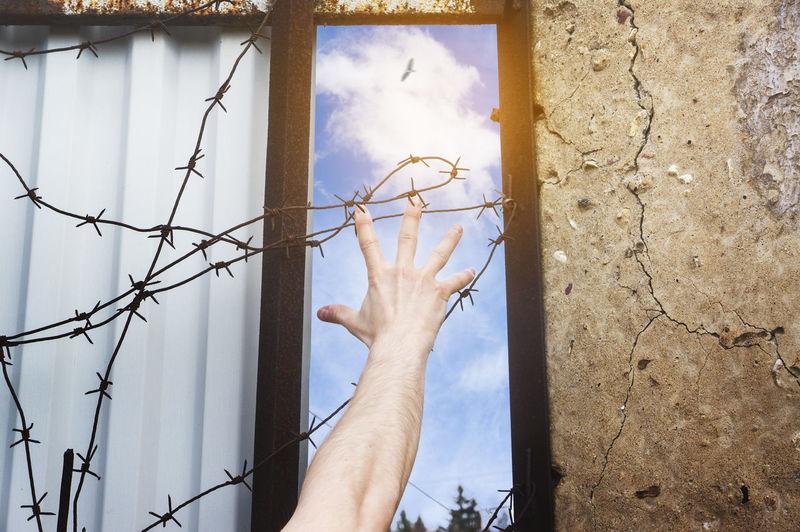 Bird Depressed Depression Free Freedom Human Human Hand Prison Salvation  Sky Sun