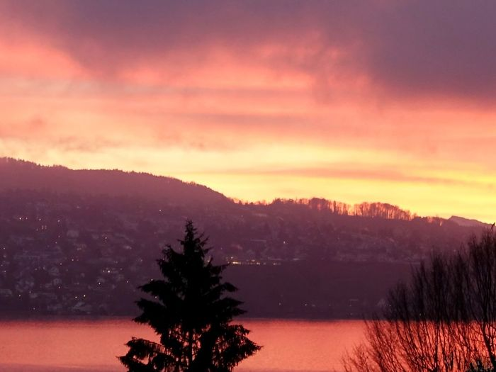 Atmosphere Atmospheric Mood Beauty In Nature Cloud Cloud - Sky Cloudy Idyllic Lake Lake Of Zurich Light Majestic Silhouette Sky Sunrise Switzerland Tranquil Scene Tranquility Tree Winter Sony Rx100 Iii Red Here Belongs To Me Photography In Motion The Great Outdoors With Adobe