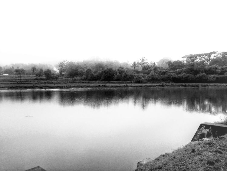 Misty Mist Misty Misty Morning Misty Waters Lake Lake View Lakeside Blackandwhite Trees Showcase March Shootermag Horizon Over Water Beautiful Morning Moment Of Silence Enjoying Life Helloworld Taking Photos India South India Breathtaking View Breathing Fresh Air Travel