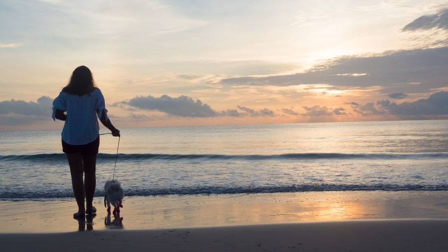 woman and dog in the morning beach Beach Beauty In Nature Cloud - Sky Dog Domestic Animals Full Length Horizon Over Water Lifestyles Nature One Animal One Person Pets Real People Rear View Reflection Scenics Sea Sky Standing Sunset Tranquil Scene Walking Water Women