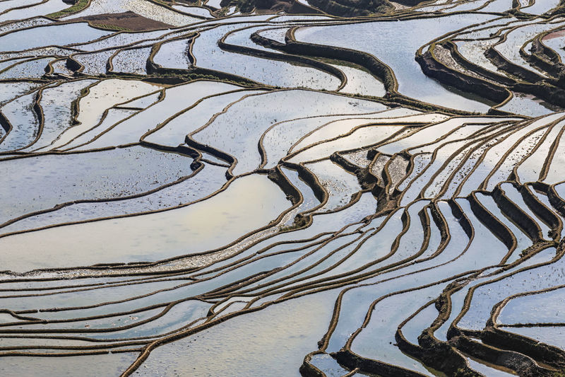 Full frame shot of terraced fields