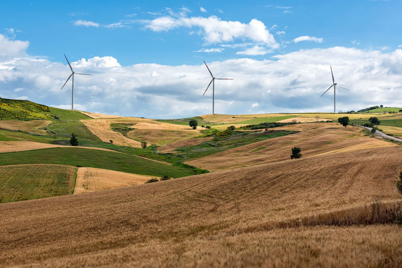 Row of wind turbines in a wind farm on the hilltops viewed across rolling agricultural land in a concept of alternative power and energy Farmland Power Agriculture Alternative Energy Electricity  Energy Field Kinetic Landscape Nature Outdoors Renewable Energy Resourcemag Rural Scene Technology Tranquil Scene Tranquility Turbine Turbines Wind Wind Farm Wind Power Wind Turbine