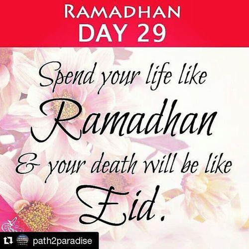 Repost @path2paradise Ramadan  Eid Life 29 Muslim Islam Love Death Cashfollowparty Cashfollowtrain2 Uglyfollowtrain Summerfollowparty