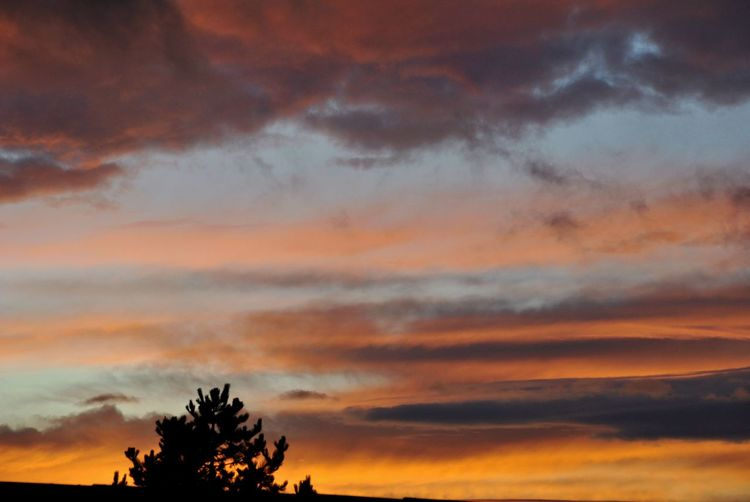 Sunset Dramatic Sky Tree Orange Color Nature Beauty In Nature Sky Scenics Beautiful Moment No People Outdoors Landscape Nikonphotography Amateurphotographer  Czech Republic View Out Of The Window Evening Sky