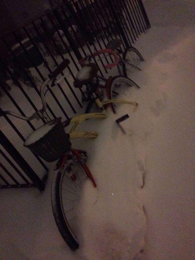 Streetphotography Newyorkcity Snowblizzard 2016 Cycle Snow