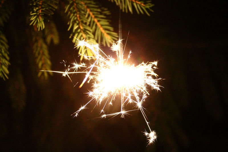 Beauty In Nature Celebration Close-up Dark Exploding Firework Firework Display Glowing Growth Illuminated Low Angle View Nature Night No People Outdoors Sky Sparkler Sparks Sun