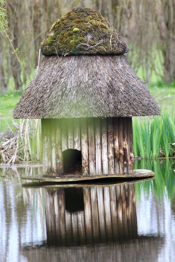 Birdhouse Water No People Waterfront Reflection Tranquility Nature Lake