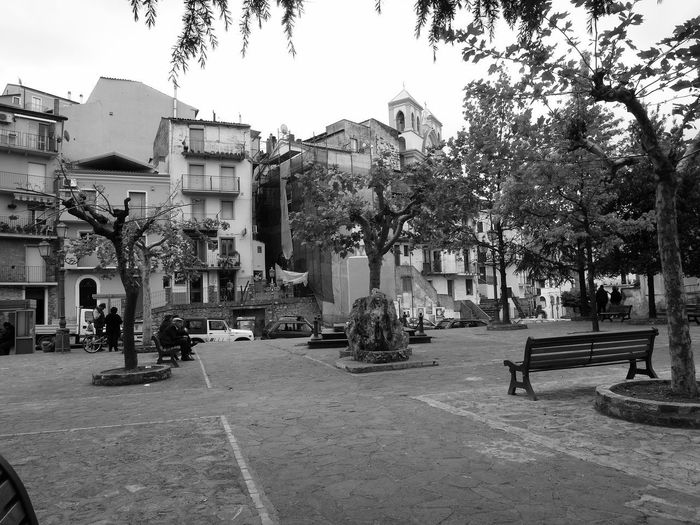 Public parc and Residential buildings Bench Seat Black & White Italia Public Park South Italy Architecture Black And White Black And White Photography Building Exterior Buildings Built Structure Calabria City Outdoors Residential Building Residential District Tree Urban Landscape Verbicaro