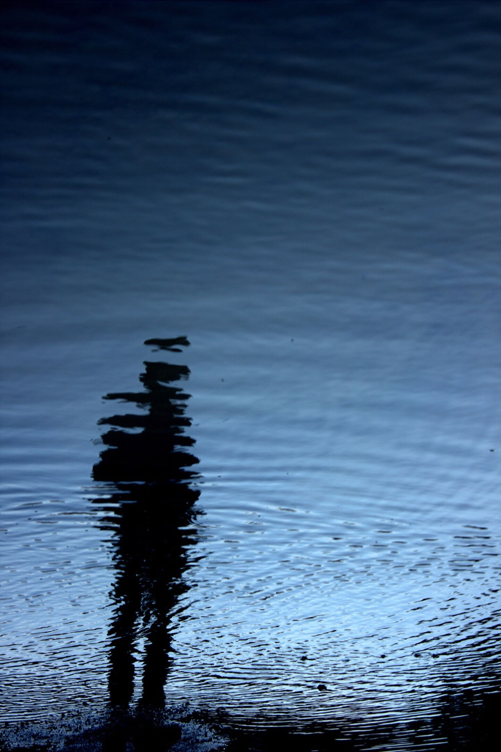 water, waterfront, rippled, reflection, sea, tranquility, nature, tranquil scene, lake, beauty in nature, silhouette, scenics, outdoors, no people, blue, idyllic, day, sky, dusk, sunlight