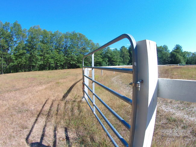 White Fence Steel Gate Large Open Space Horse Coral Beautiful Nature Blue Sky Green Grass Relaxing Taking Photos Enjoying Life Hanging Out Check This Out Trees In The Distance Perfect Day Out Door Beauty Beautiful Summer Unedited