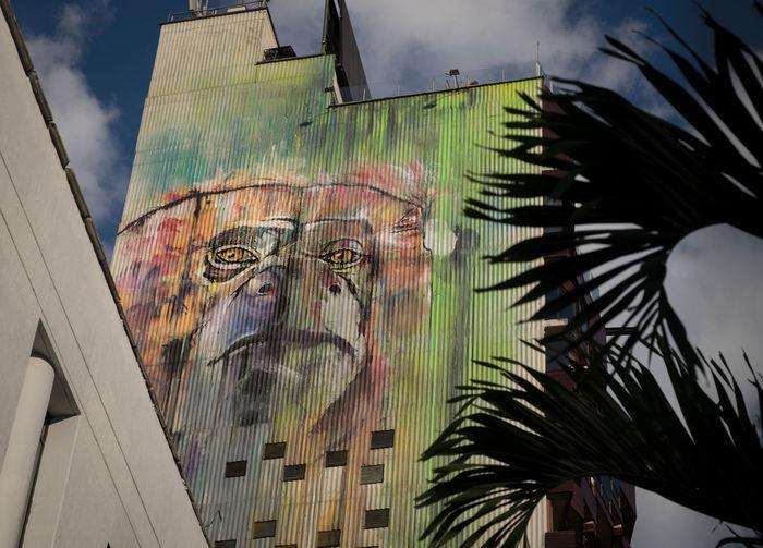 Monkey mural in Parque Lleras, Medellin, Colombia. Colombia Medellin City Medellín Mural Painting Parque Lleras Colombia ♥  Monkey Mural Mural Art Zona Rosa