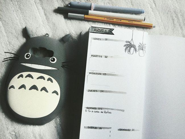 Bujocommunity Bujo Bulletjournal Bulletjournaling Totoro Totoro Love Mivecinototoro Studioghibli