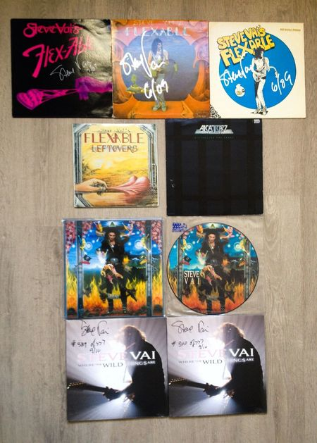 Steve Vai vinyl's - Flexable, Flexable Leftovers, Disturbing the Peace, Passion and Warefare, Where The Wild Things Are Stevevai Guitarist Artist