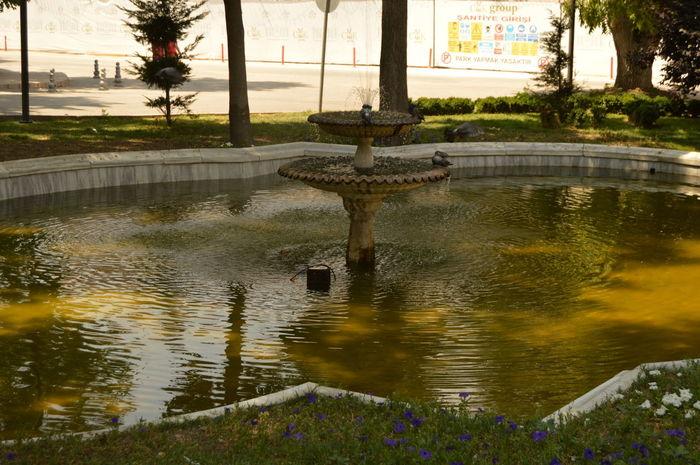 Havuz Fiskiye Manzara Nature_collection Enjoying Life Gettyimages Getty X EyeEm