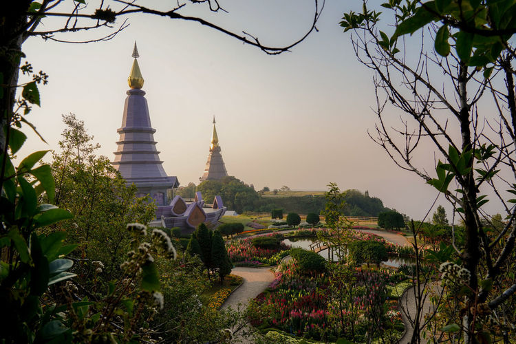 Plant Sky Architecture Built Structure Tree Building Exterior Belief Religion Place Of Worship Nature Spirituality Building Growth No People Travel Destinations Tourism Travel Outdoors Spire  Doi Inthanon Chiang Mai Chiang Mai | Thailand