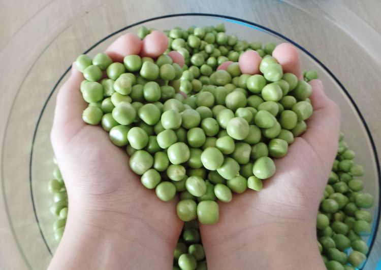 Beans Abundance Close-up Day Directly Above Food Food And Drink Freshness Green Color Healthy Eating Heart Shape High Angle View Human Body Part Human Hand Indoors  Large Group Of Objects One Person Pea Pod People Real People Vegetable Food Stories