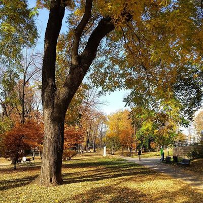 Belgrade Park Ig_belgrade Ig_bgd