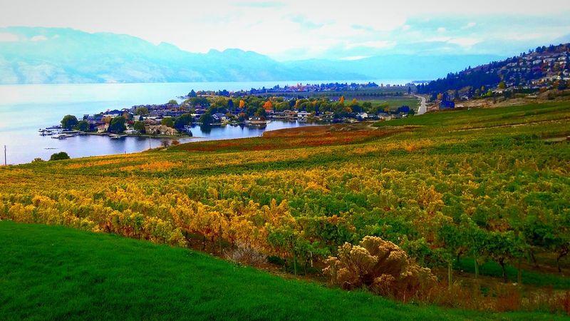 Kelowna Quailsgate Winery