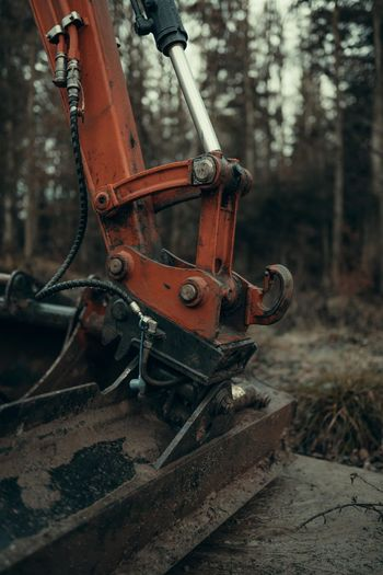 Close-up of earth mover in forest