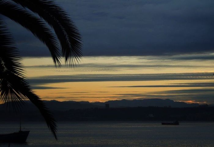 Good Morning Morning Sunrise Sunrise_Collection Sunrise Silhouette Sunrise - Dawn Sun Behind The Mountain Sky And Clouds Ships Palm Tree Bay Of Valparaiso
