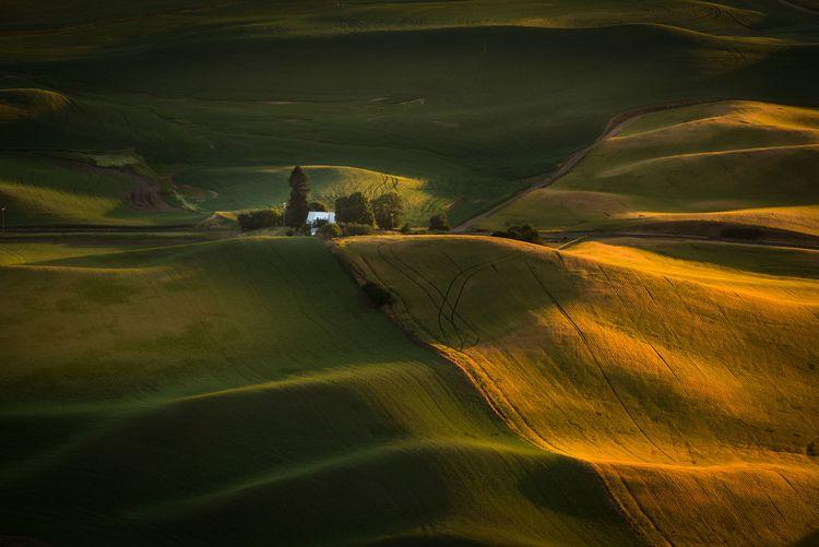 Scenic view of landscape