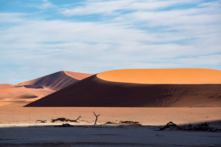 This is wild namibia.