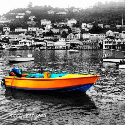 Colorporn Colourbound Colourporn Grenada Islandlivity Islandlife All_shots Ourbestshots Bestofmycity_2see Ig_captures