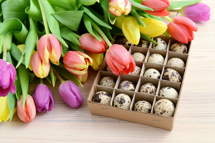 bunch of tulips with quail eggs. easter background. Bunch Of Flowers Tulips🌷 Tulip Tulpe Tulips Greetingcards Love Quail's Eggs Quaileggs Quail Eggs Easter Egg Easter Eggs Easter