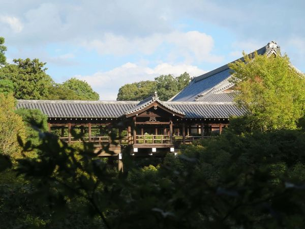 Architecture Built Structure Tree Day Outdoors No People Nature Temple Kyoto Japan Religion Tradition