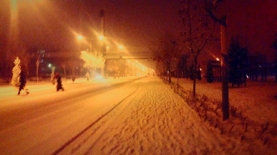 Snow Elz