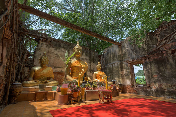 Statue of statues in temple