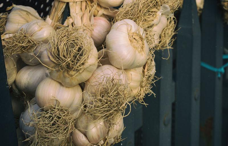 Garlic Bulbs Garlic Anti Oxidant Close-up Flavoring Food Food And Drink Freshness Garlic Bulbs Hanging Garlic Healthy Eating Herbal Herbal Medicine Nutritious Pungent Strong Smell