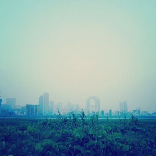Landscape Morning Sky Foggy Morning Morningrun Riverside Iphonephotography Buildings Umeda Sky Building River View Cityscape