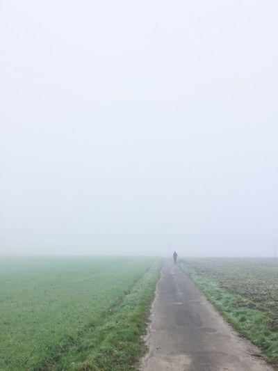 Landscape The