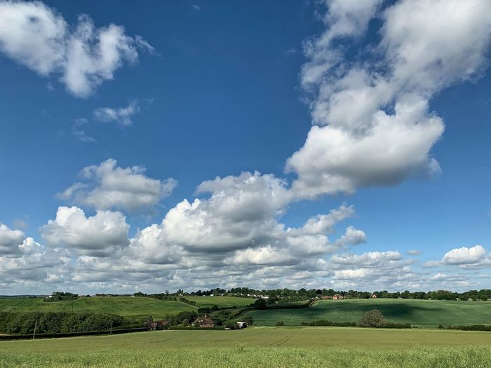Hertfordshire landscape Iphone XR Ipnoneography Cloud - Sky Sky Plant Field Environment Landscape Tree Beauty In Nature Green Color Scenics - Nature Tranquility